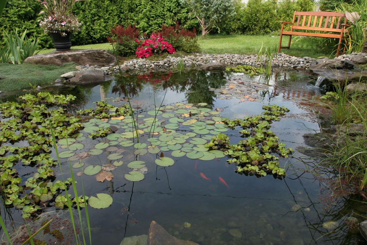 paysagiste Jardin d'eau québec