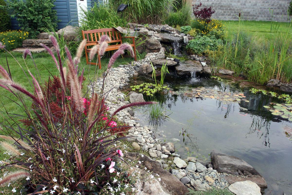 jardin d'eau design