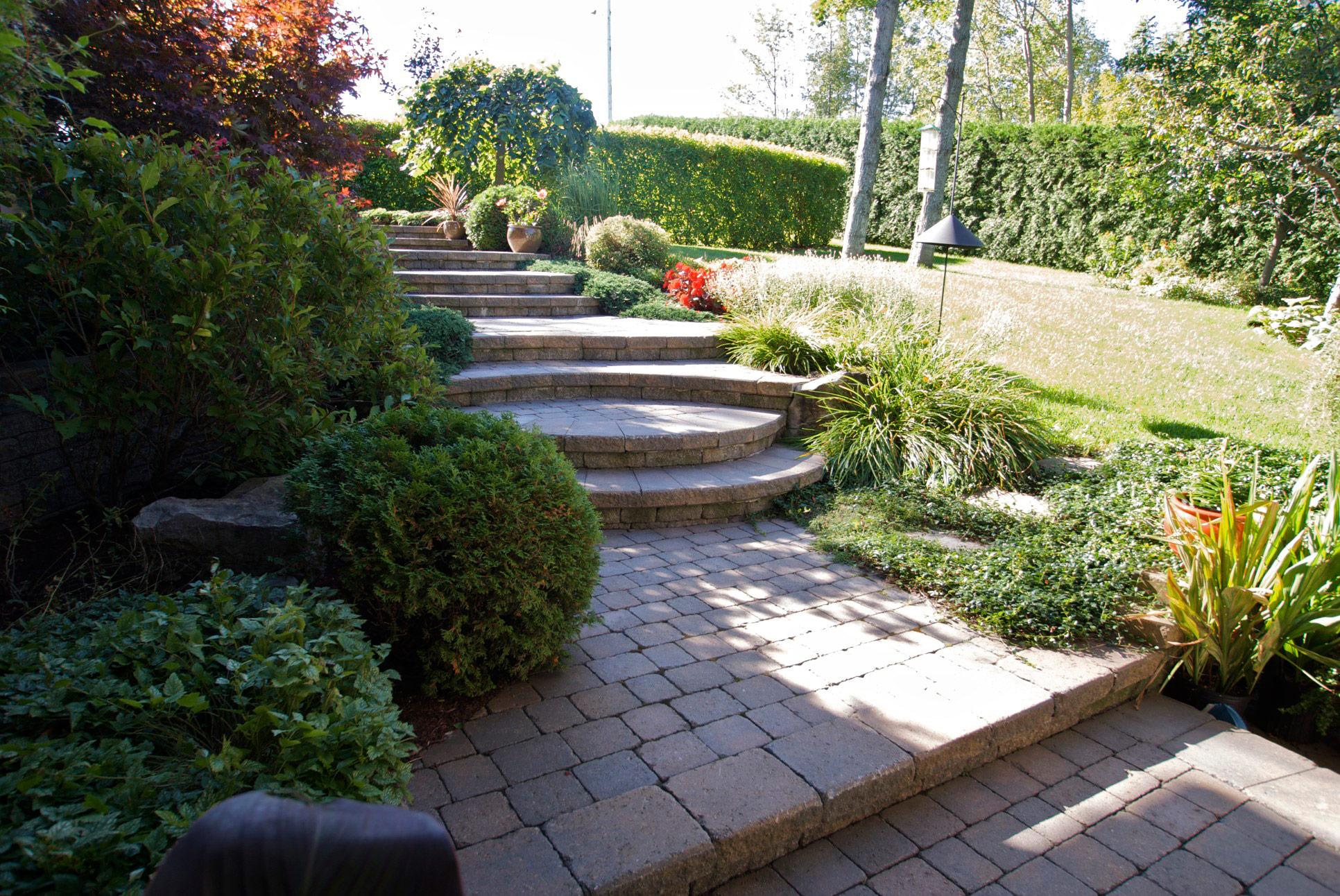 escalier exceptionnelle avec arbres et fleurs