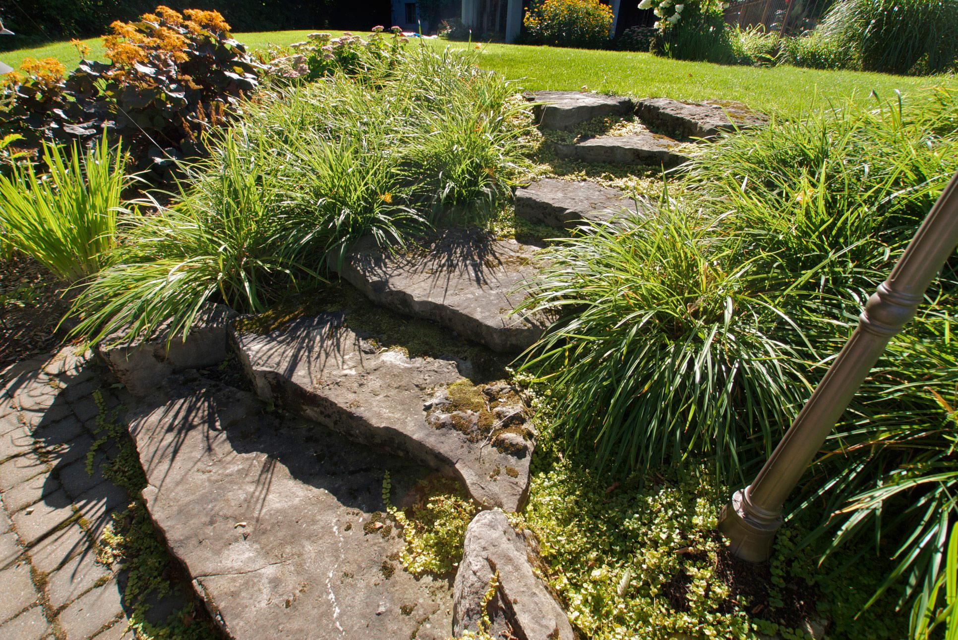 escalier en pierre naturel